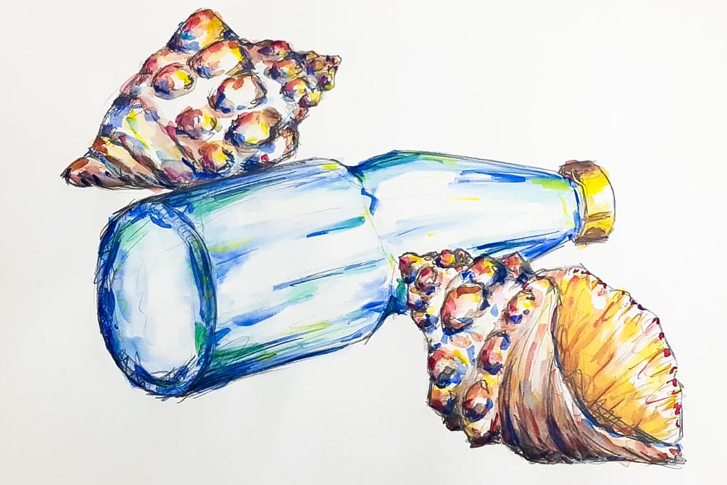 Aquarell und Bleistift in einer Stillleben Gestaltung von Muscheln und Flaschen kombiniert.